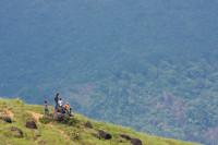 Ponmudi_Thiruvananthapuram
