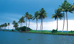 Backwaters-Thumb