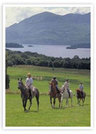 Munnar_horse-ride