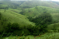gree meadows _vagamon