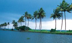 Backwaters-Thumb