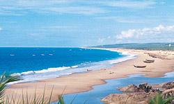 Beachest-Thumb